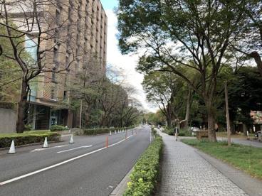 東京大学医学部附属病院の画像2