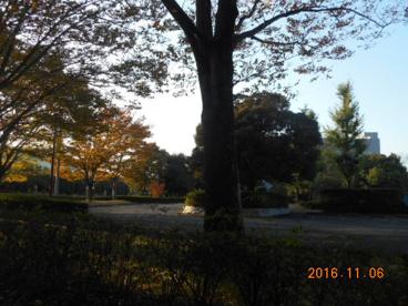 白草台運動公園の画像2
