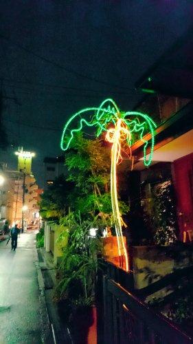 光るヤシの木の画像