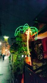 光るヤシの木の画像1