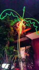 光るヤシの木の画像3