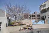 神戸市立 多聞東小学校