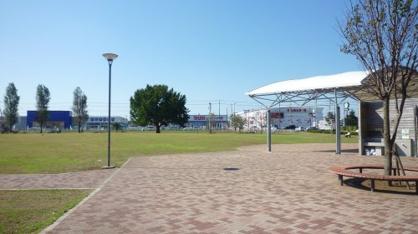 新木戸大銀杏公園の画像1