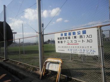 津留運動公園の画像2