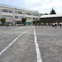 杉並区立 和田小学校の画像