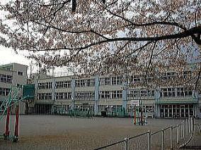 杉並区立 杉並第八小学校の画像1