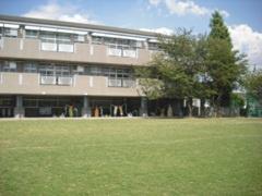 杉並区立 桃井第五小学校の画像