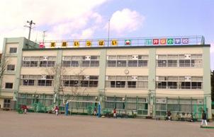 杉並区立 井荻小学校の画像