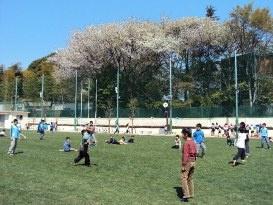 杉並区立 高井戸小学校の画像1