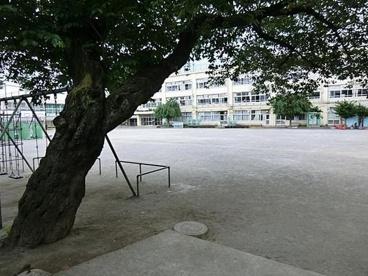 杉並区立 高井戸第四小学校の画像1