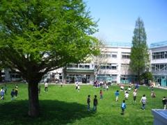 杉並区立 大宮小学校の画像