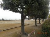 万年寺下公園