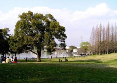 久喜菖蒲公園の画像1