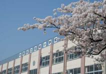 中野区立 白桜小学校