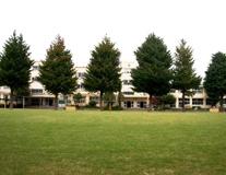 中野区立 武蔵台小学校
