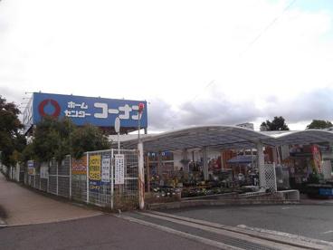 ホームセンターコーナン狭山店の画像1
