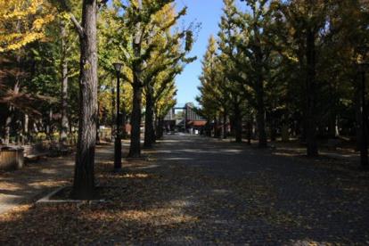 洞峰公園の画像1