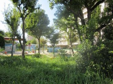 ドレミ保育園の画像1
