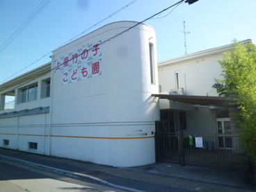 上里竹の子保育園(社会福祉法人)の画像1