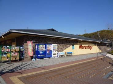 マルシゲ洛西福西店の画像1