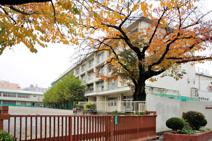 石神井東中学校