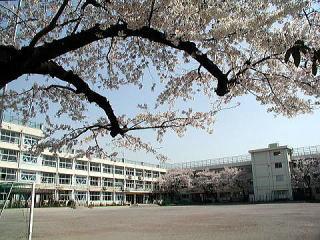 上石神井中学校の画像1