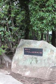 すずめのお宿緑地公園の画像1