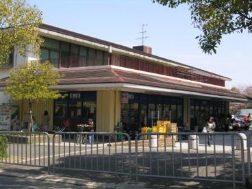スカイマート 藤沢台店の画像1