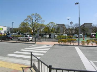 金剛駅の画像2