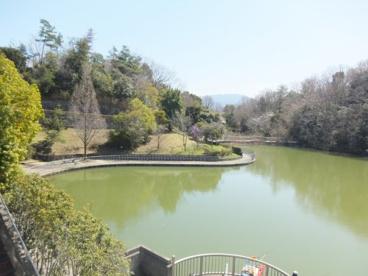 明治池公園の画像1