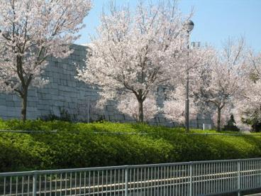大阪府立狭山池博物館の画像3
