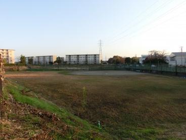 高津運動公園の画像1