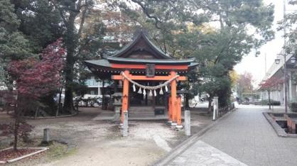 若宮八幡社 大楠の画像1