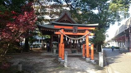 若宮八幡社 大楠の画像2