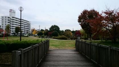 山ノ手公園の画像2