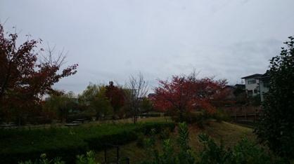 山ノ手公園の画像3