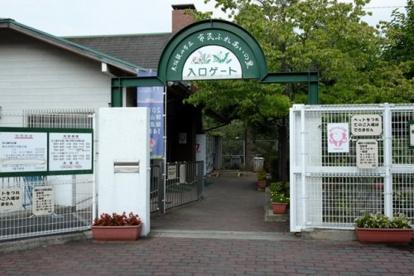 大阪狭山市立市民ふれあいの里青少年野外活動広場の画像1
