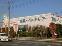 ニトリ 厚木店