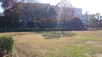 上野公園の画像3