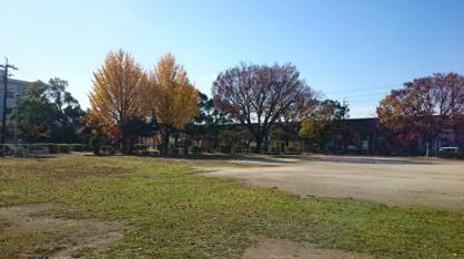 上野公園の画像4