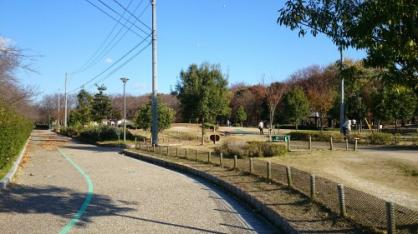 柳川瀬公園の画像1