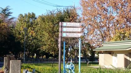 柳川瀬公園の画像2