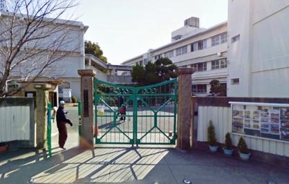 伯太小学校の画像1