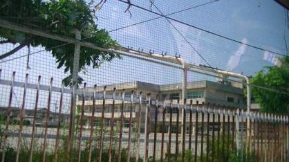 石巻市立中里小学校の画像2
