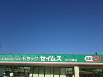 ドラッグセイムス 川口元郷店