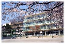 武蔵野市立 境南小学校