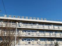 武蔵野市立 本宿小学校