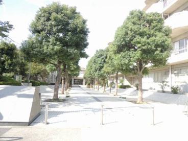 入谷南中学校の画像1
