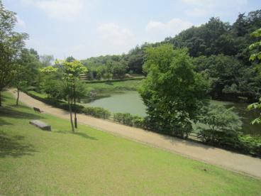 上の池公園の画像2