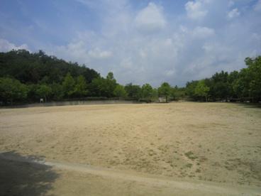 上の池公園の画像4